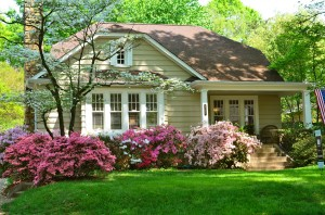 Beautiful House in the woods speaks of beauty but does it speak of welcome